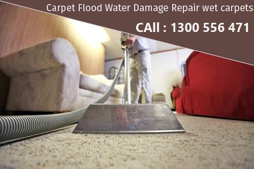 Carpet Flood Water Damage Restorations Brisbane
