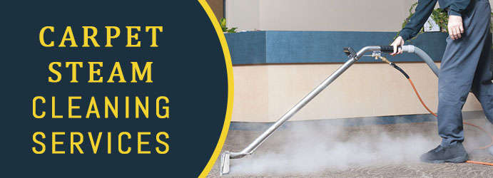 Carpet Steam Cleaning in Barney View