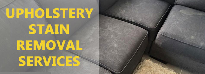 Upholstery Stain Removal Services West End