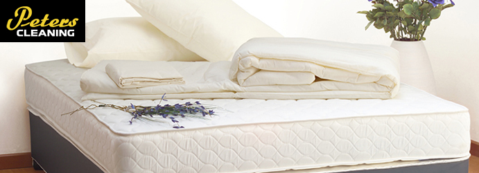 Mattress Dust Mites Treatment Lilyvale