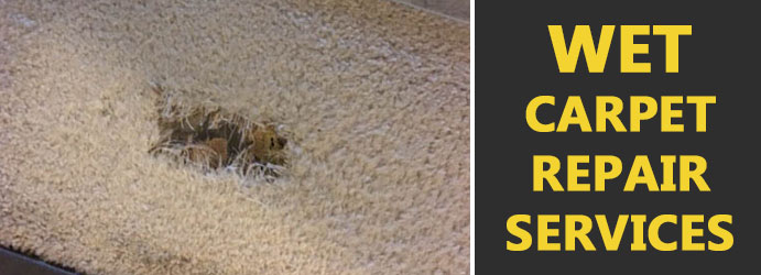 We Carpet Repair Service