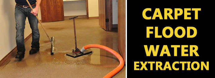 Carpet flood water extraction Ivory Creek
