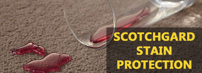 Scotchgard Stain Protection Barney View