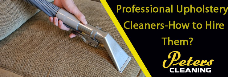 Professional Upholstery Cleaner