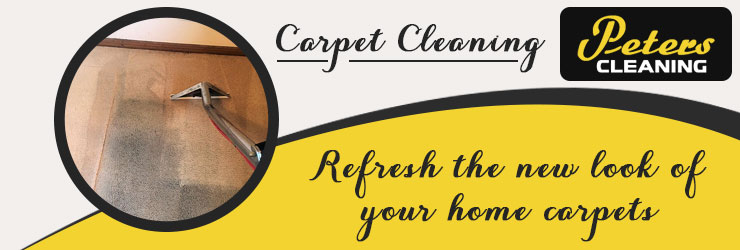 Carpet Cleaning Wall Flat
